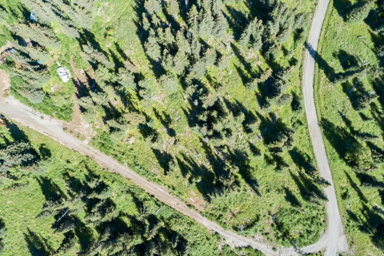 L18 Kivalina Circle - Photo 1