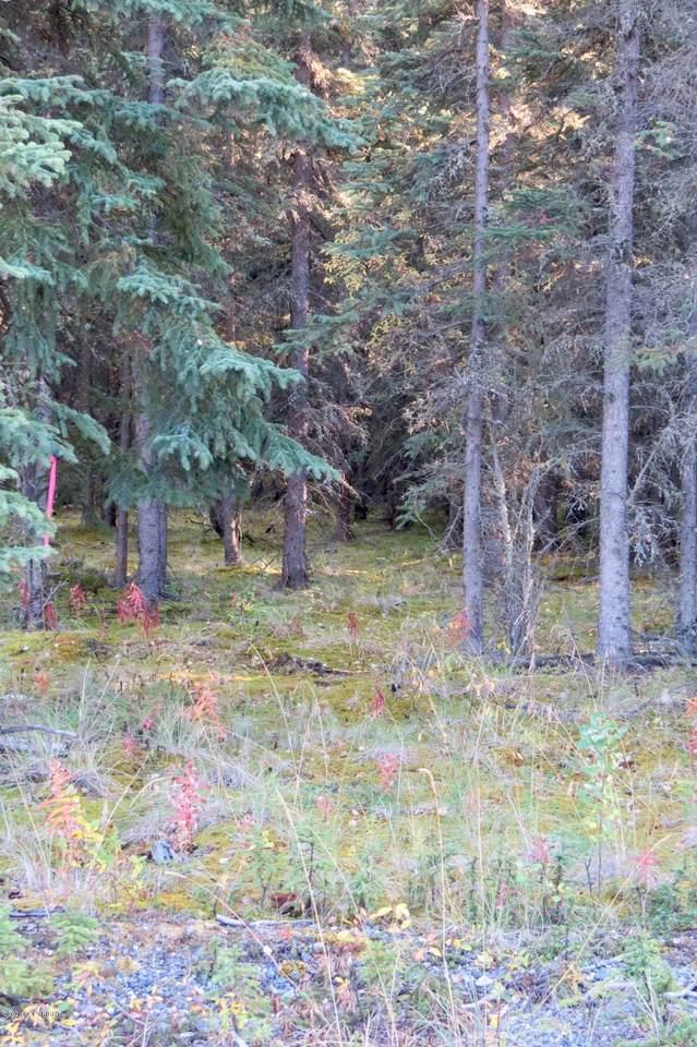 https://bt-photos.global.ssl.fastly.net/alaska/1280_boomver_1_20-14322-2.jpg