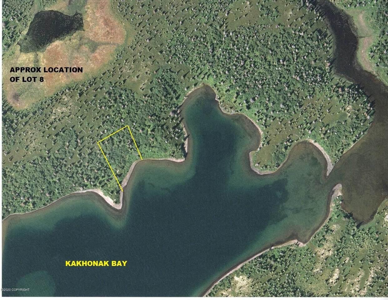 Lt 8 Kakhonak Bay (No Road) - Photo 1