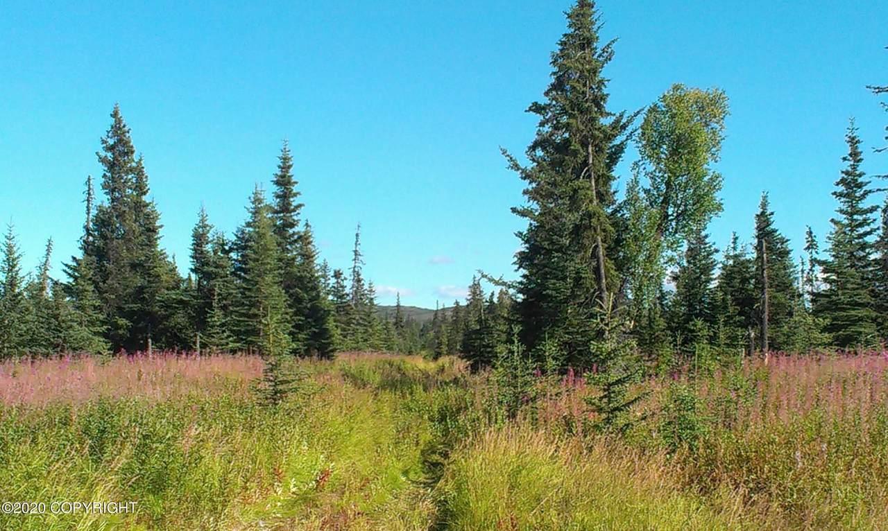 D34 Alaskan Wildwood Ranch(R) - Photo 1