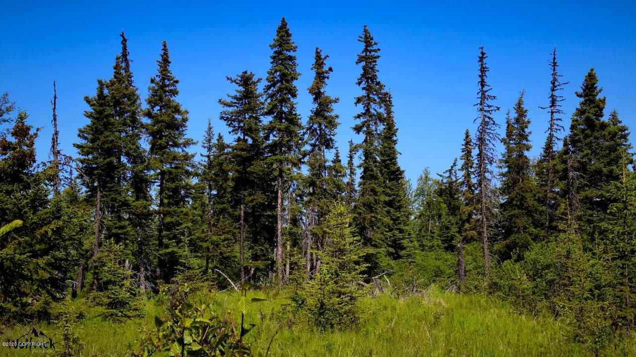 C7 Alaskan Wildwood Ranch(R) - Photo 1