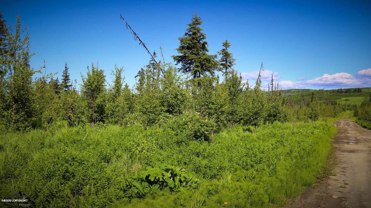 C24 Alaskan Wildwood Ranch(R) - Photo 1