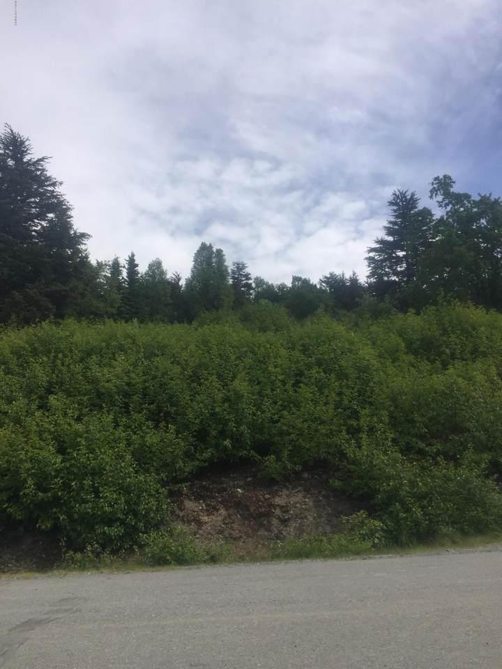 L22 Lost Horizon Drive - Photo 1