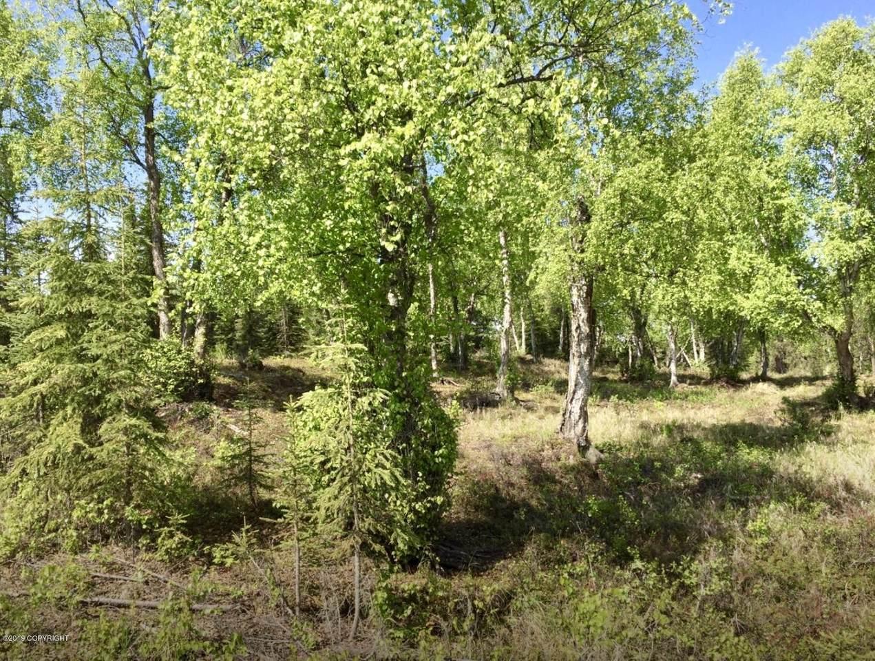 38145 Woods Drive - Photo 1