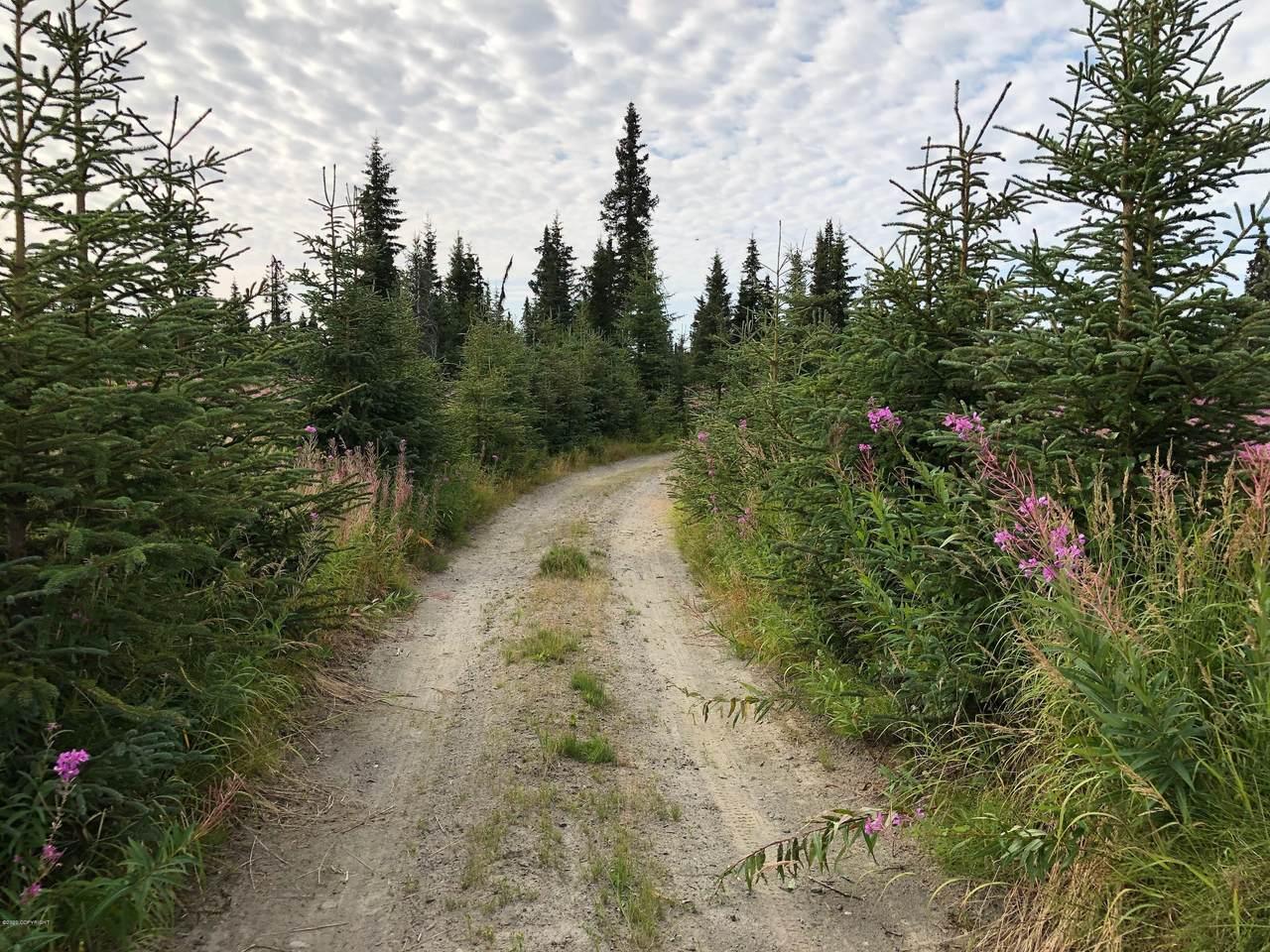 L3 B1 Stina Creek Road - Photo 1