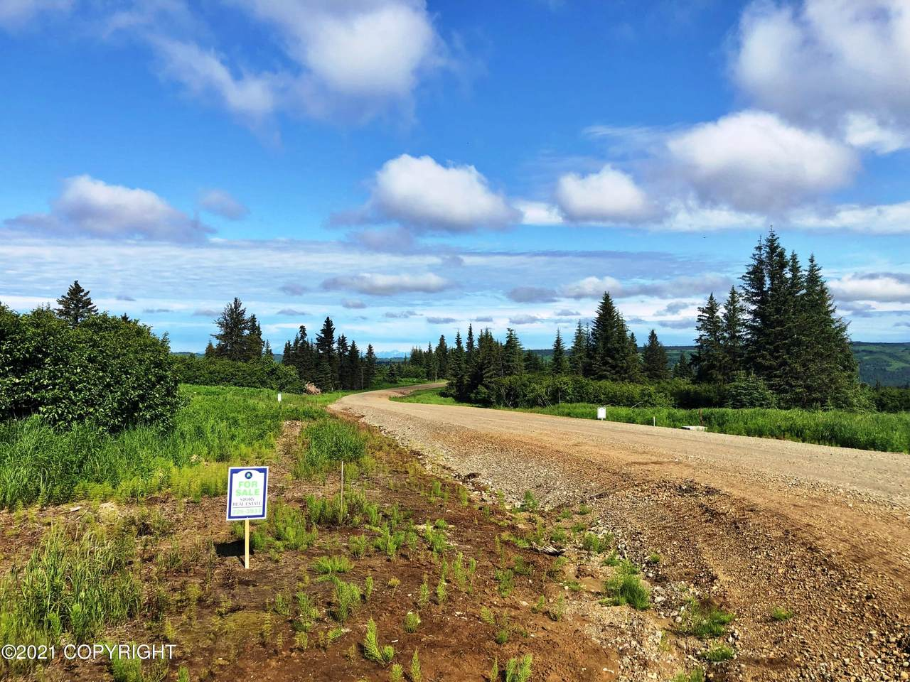 000 Mossberg Drive - Photo 1