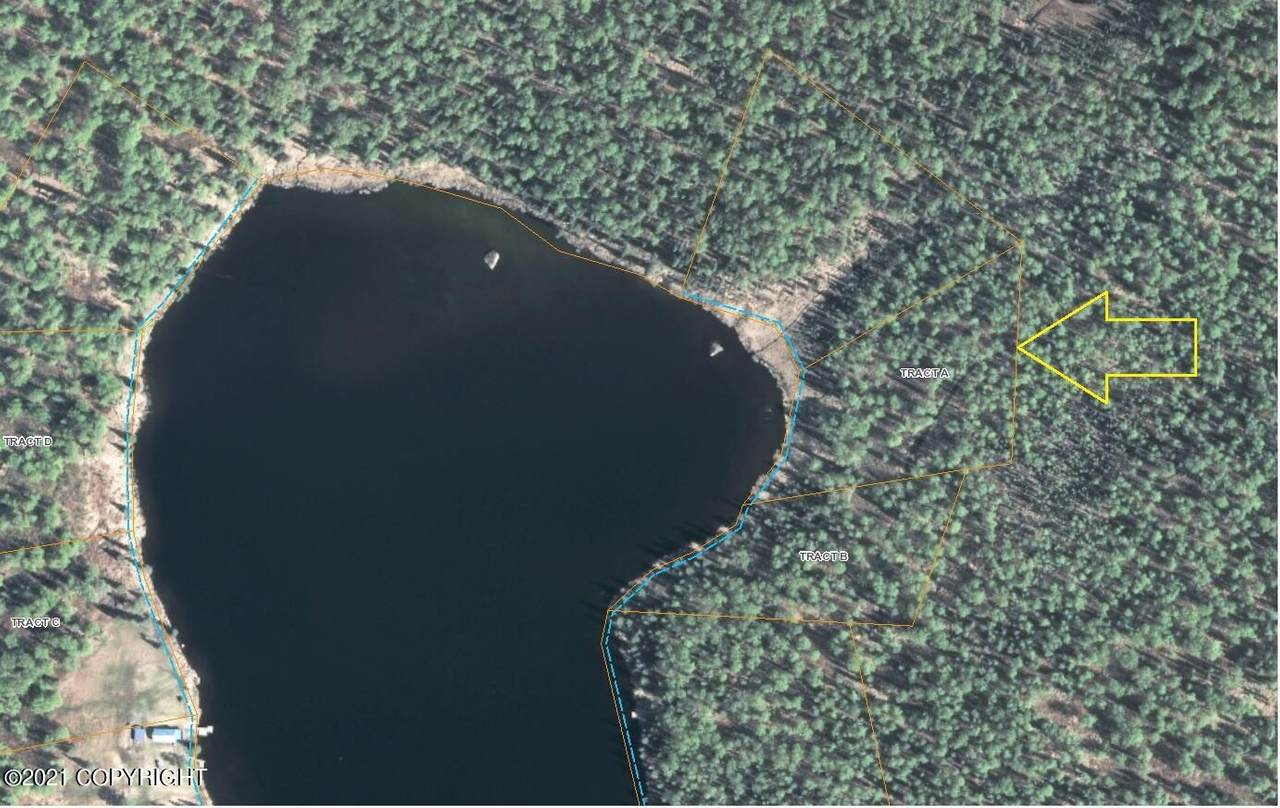 Tract A Lakefront (No Road) - Photo 1