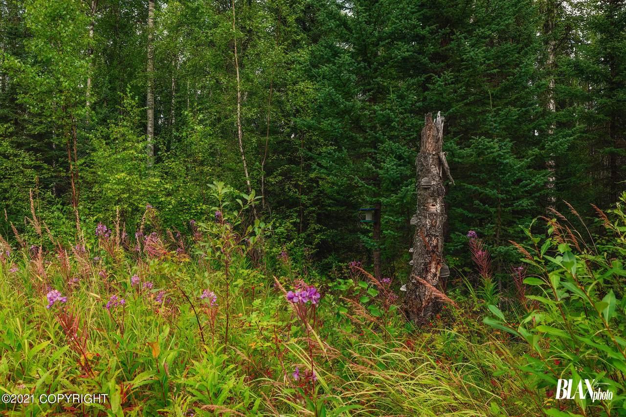 https://bt-photos.global.ssl.fastly.net/alaska/1280_boomver_1_21-13996-2.jpg