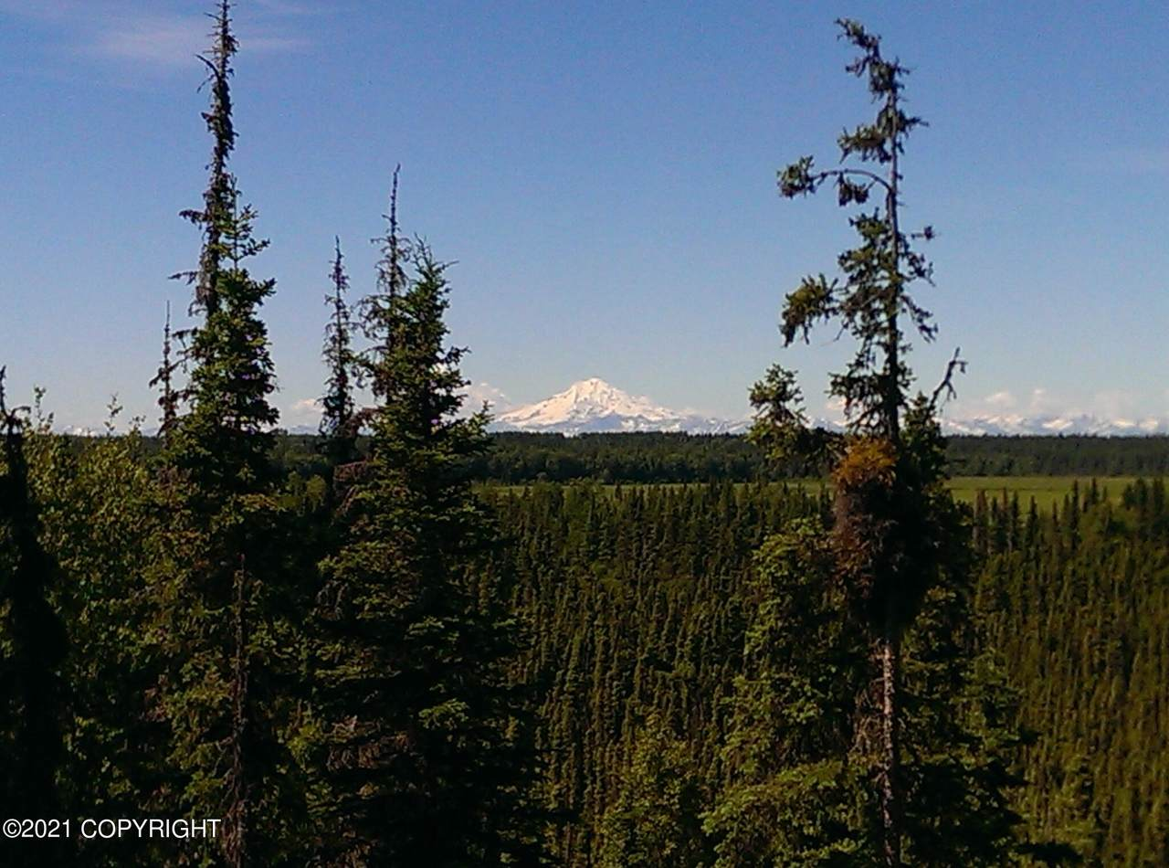 25105 Arctic Fox Road - Photo 1