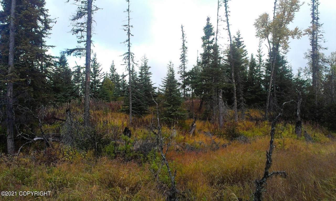 D26 Alaskan Wildwood Ranch(R) - Photo 1