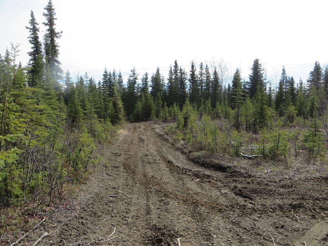 52349 Creek End Road - Photo 1