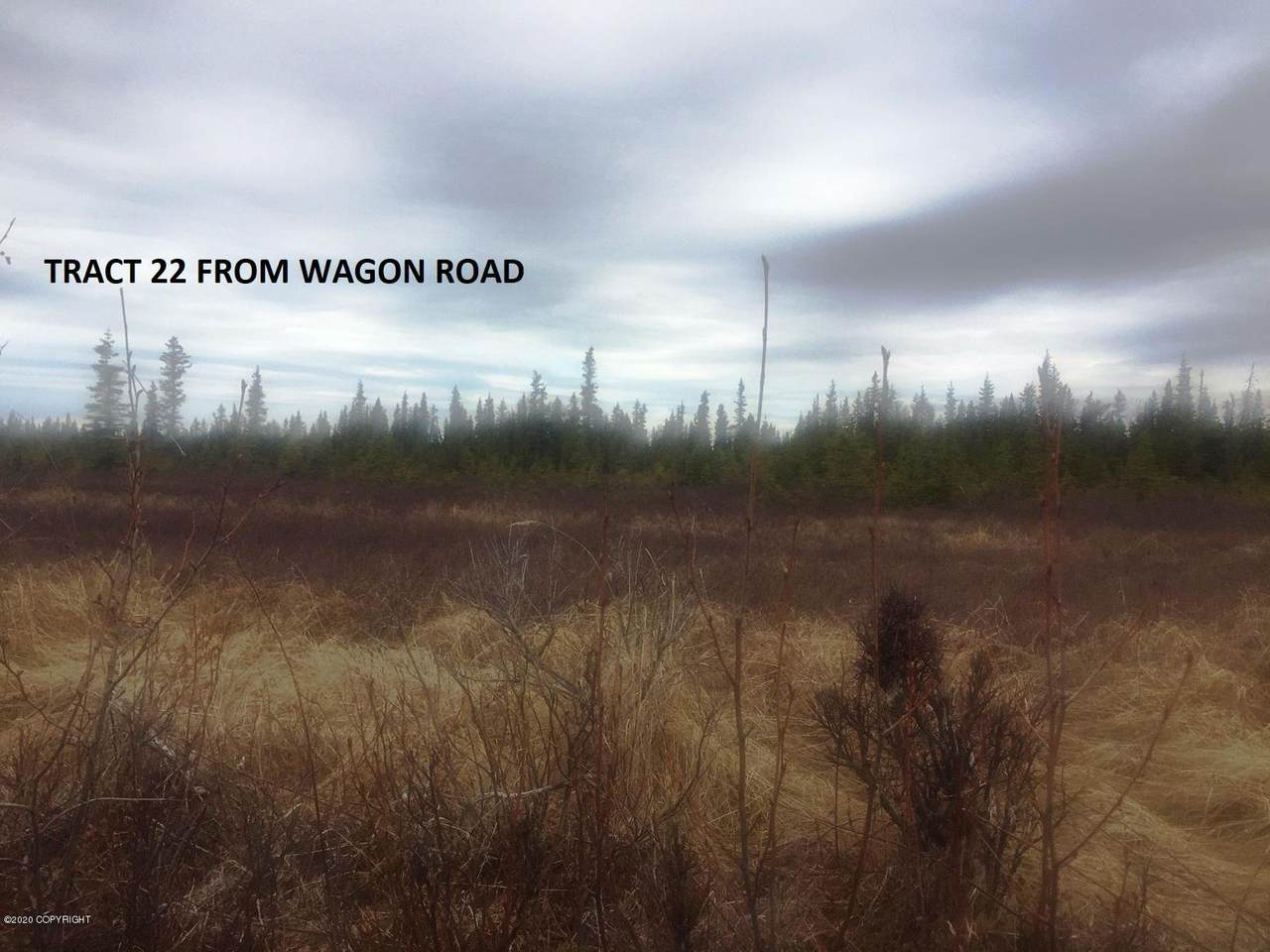 Tr 22 Wagon Road - Photo 1