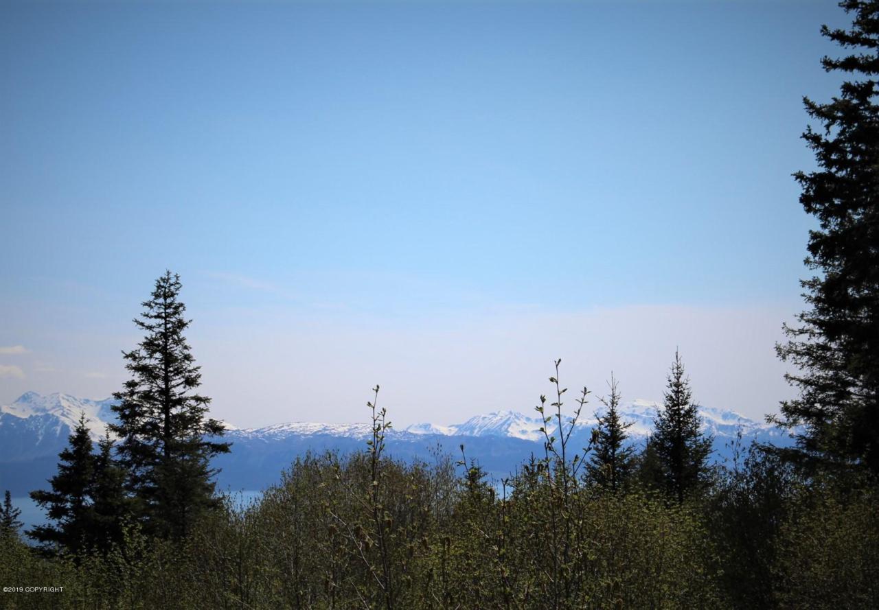 2610 Highland Drive - Photo 1