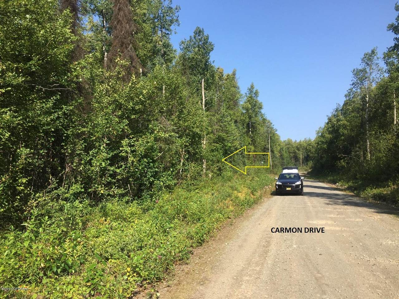 47068 Carmon Drive - Photo 1