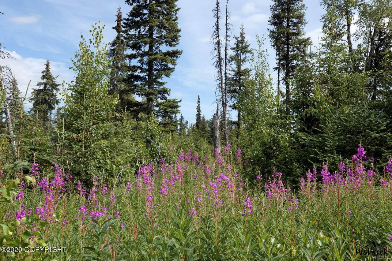 D24 Alaskan Wildwood Ranch(R) - Photo 1