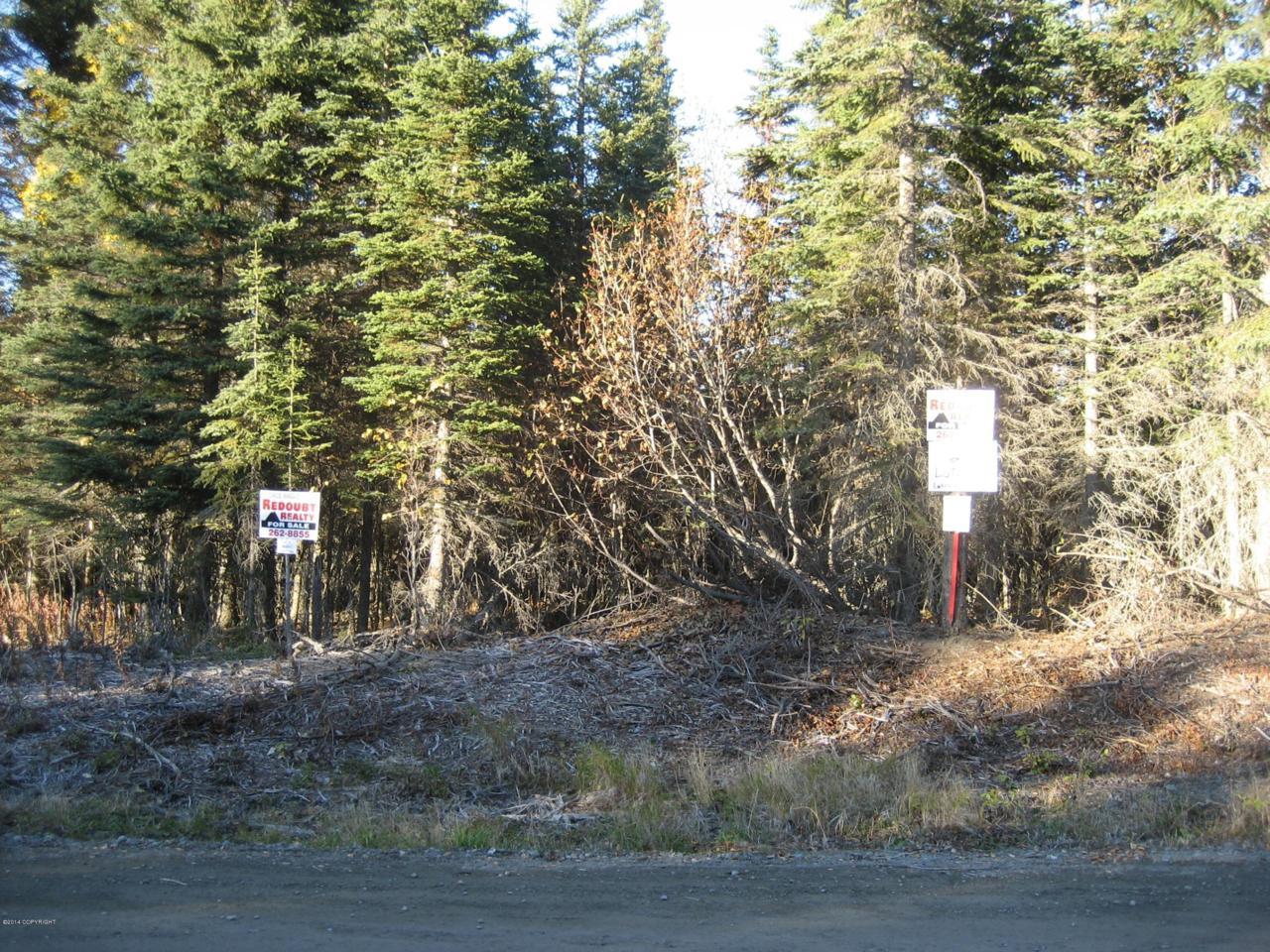 L2 B1 Tolum Road - Photo 1
