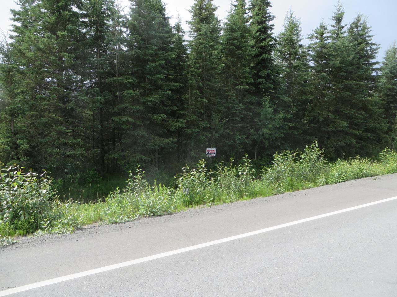 35565 Robinson Loop Road - Photo 1