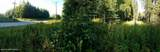 L11 B1 Baranoff Terrace - Photo 5