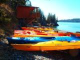 L1-2 Otter Cove - Photo 17