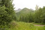 37501 Eklutna Lake Road - Photo 25