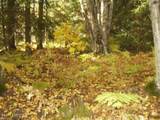 000 Hill Road - Photo 2