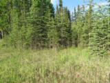 L2 B3 Lumberjack Lane - Photo 2