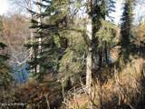 L1-9 Woodpecker Lane - Photo 9