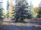 15622 Wild Salmon Way - Photo 3