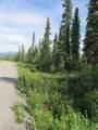 3 mile Nabesna Road - Photo 3