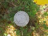 3 mile Nabesna Road - Photo 7