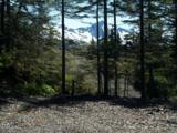 101 Cabin Ridge Road - Photo 6