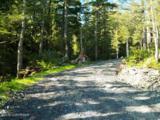 101 Cabin Ridge Road - Photo 8