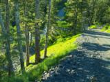 102 Cabin Ridge Road - Photo 3