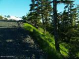 102 Cabin Ridge Road - Photo 5