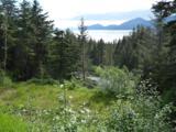 102 Cabin Ridge Road - Photo 9