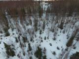 L7 Peterson Forest Park - Photo 18