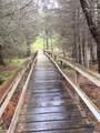46765 Sidelinger Trail - Photo 34