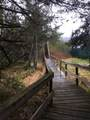 46765 Sidelinger Trail - Photo 35