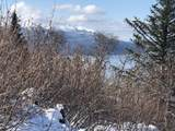 L2 B3 Southpointe Ridge Drive - Photo 5