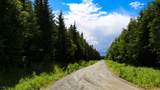 22250 Sterling Highway - Photo 10