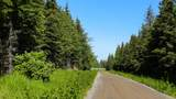 22250 Sterling Highway - Photo 3