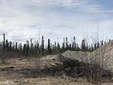 5975 Richardson Highway - Photo 10