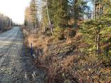 51605 Georgine Lake Road - Photo 2