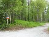 30051 Mastodon Road - Photo 14