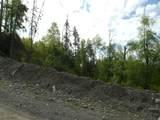 11003 Ridge Road - Photo 18