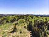 000 Homestead Trail - Photo 1