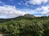 L4 Glen Alps Road - Photo 2