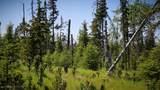 D18 Alaskan Wildwood Ranch(R) - Photo 4