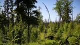 D18 Alaskan Wildwood Ranch(R) - Photo 5