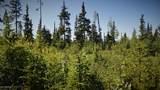 D18 Alaskan Wildwood Ranch(R) - Photo 8